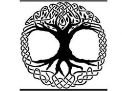 Caprani Care Ltd